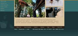 Brandon TourCo web design