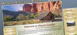 Wayne County web design